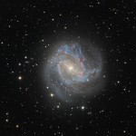 Die Spiralgalaxie Messier 83