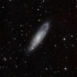 Die Spiralgalaxie NGC247