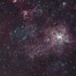 Der Tarantelnebel - Emissionsgebiet in der Grossen Magellanschen Wolke
